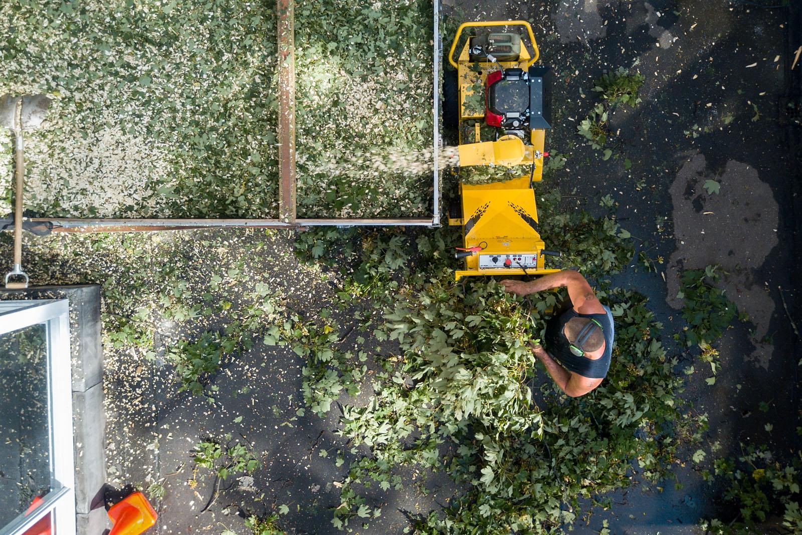 Hudig boomverzorging kappen rooien snoeien frezen afvoeren verplanten